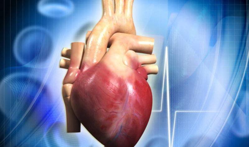 terapia anticoagulante per la prevenzione del rischio di ictus